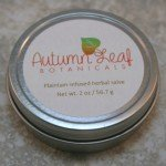 Plantain infused herbal salve, unscented